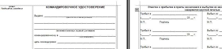 Командировочное Удостоверение Бланк Казахстан - statyahospital