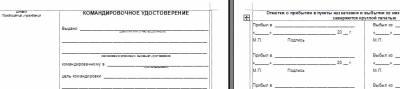 Бланк Авансового Отчета на русском языке